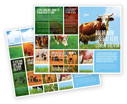 advertising cards templates