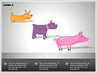 Animals Diagrams