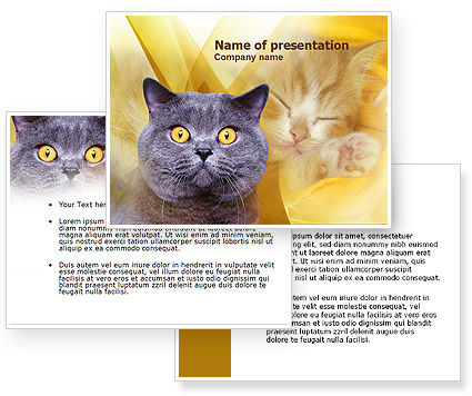 Powerpoint Background Cats Blue Cat Powerpoint Template