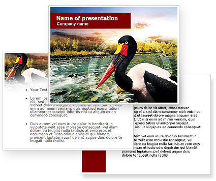 Free Saddle-billed Stork PowerPoint Template #01176