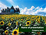 Field of Sunflowers PowerPoint Template