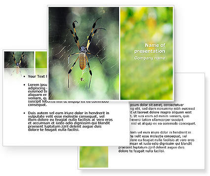 Spider PowerPoint Template #02704