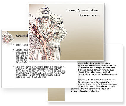 anatomy ppt templates free download - craniofacial anatomy powerpoint template poweredtemplate