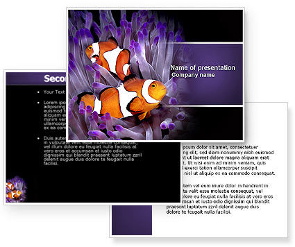 Clown Fish PowerPoint Template #04626