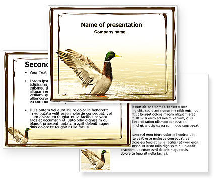 River duck powerpoint template 3 for Duck slide plans