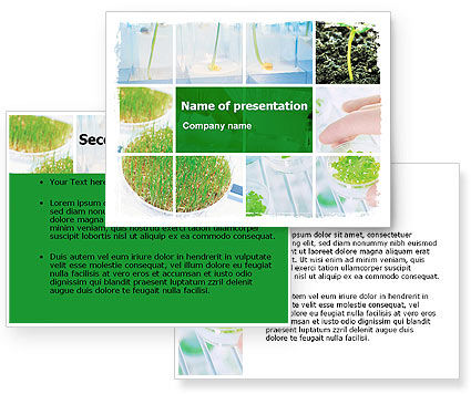 Free Plant Breeding In Laboratory PowerPoint Template #06192