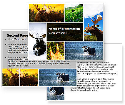 Moose PowerPoint Template #06785
