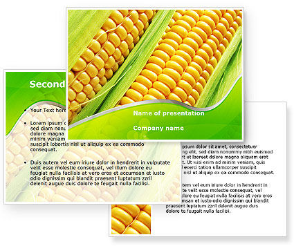 Ear Of Corn PowerPoint Template #09782