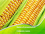 Ear Of Corn PowerPoint Template #09782 - small preview