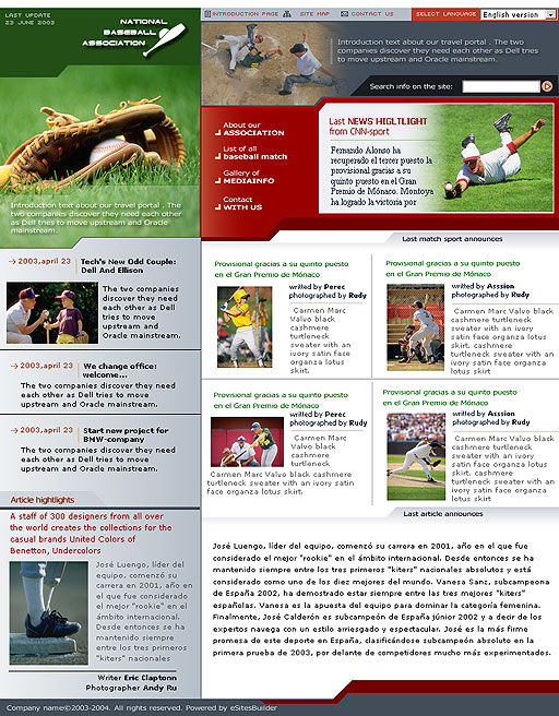 Baseball Newsletter Template Baseball Web Template 00398