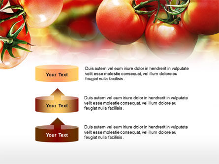 Tomato Farming PowerPoint Template Slide 10