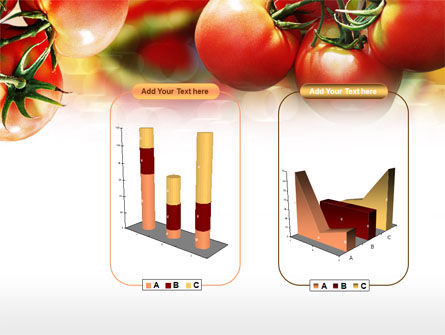 Tomato Farming PowerPoint Template Slide 13