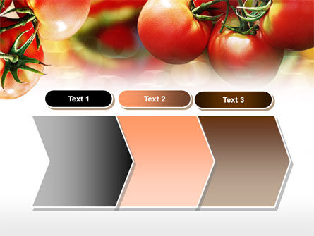 Tomato Farming PowerPoint Template Slide 16