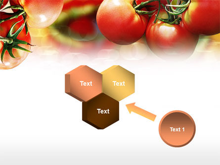 Tomato Farming PowerPoint Template Slide 19