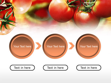 Tomato Farming PowerPoint Template Slide 5