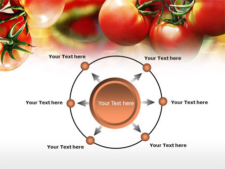 Tomato Farming PowerPoint Template Slide 7