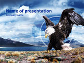 Northern lights: North American Eagle PowerPoint Template #00863
