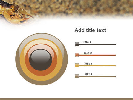 desert hairy scorpion powerpoint template backgrounds