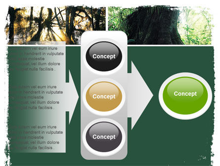 Jungle PowerPoint Template Slide 11