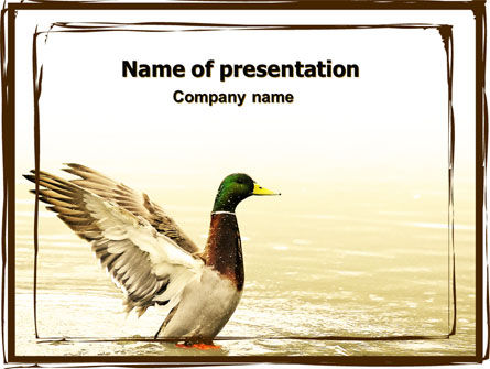 River duck powerpoint template backgrounds 06105 for Duck slide plans