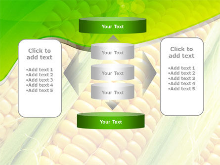 Ear Of Corn PowerPoint Template Slide 13