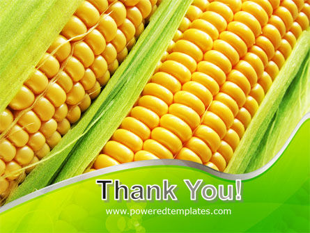 Ear Of Corn PowerPoint Template Slide 20