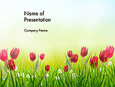 Nature & Environment: Flower Field PowerPoint Template #14133
