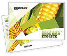 Food & Beverage: Maize Postcard Template #00973