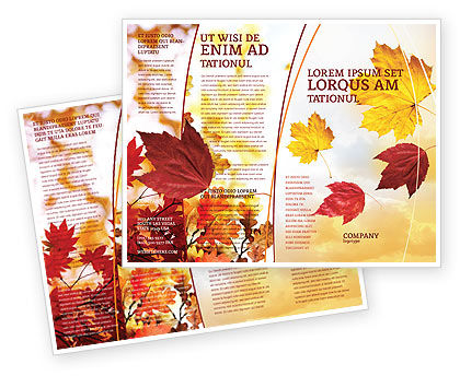 Falling Leaves In The Sunset Brochure Template, 01454, Nature & Environment — PoweredTemplate.com