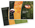 Sports: American Football Play Off Brochure Template #01674