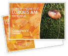 Sports: American Football Play Off Postcard Template #01674