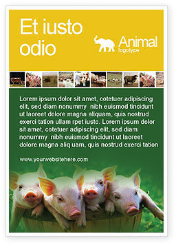 Agriculture and Animals: Pig Ad Template #01708