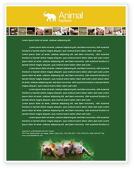 Pig Letterhead Template, 01708, Agriculture and Animals — PoweredTemplate.com