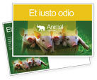 Agriculture and Animals: Pig Postcard Template #01708