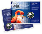 Agriculture and Animals: Flamingo Brochure Template #01725