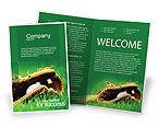 Sports: Modello Brochure - Guanto e mazza da baseball #01833