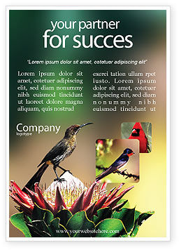 Cape Sugarbird Ad Template, 02052, Nature & Environment — PoweredTemplate.com
