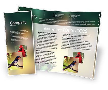 Nature & Environment: Cape Sugarbird Brochure Template #02052