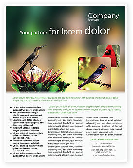 Nature & Environment: Cape Sugarbird Flyer Template #02052