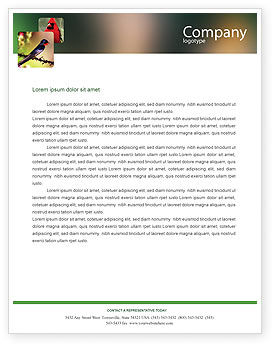 Nature & Environment: Cape Sugarbird Letterhead Template #02052
