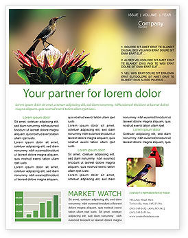 Nature & Environment: Cape Sugarbird Newsletter Template #02052