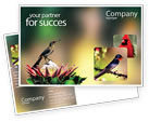 Nature & Environment: Cape Sugarbird Postcard Template #02052