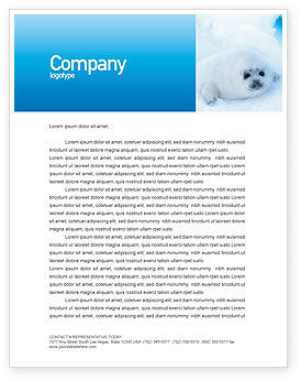 Agriculture and Animals: Fur-Seal Letterhead Template #02230