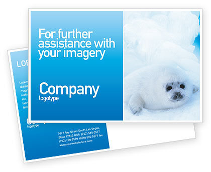 Fur-Seal Postcard Template, 02230, Agriculture and Animals — PoweredTemplate.com