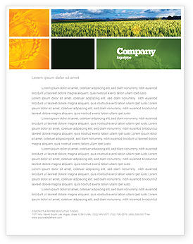 Grain Letterhead Template
