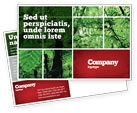 Nature & Environment: Tropical Forest Postcard Template #02355