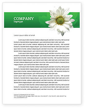 Ox-eye Daisy Letterhead Template, 02533, Nature & Environment — PoweredTemplate.com