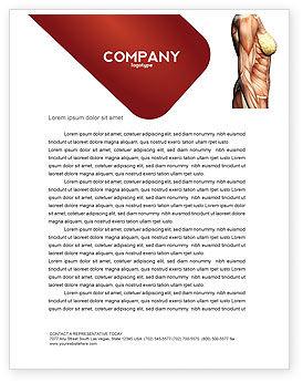 Medical: Female Anatomy Muscular Corset Letterhead Template #02872