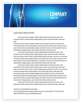 Medical: Male Reproductive Organs Letterhead Template #03223