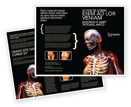 Female Anatomy Breast And Facial Bones Brochure Template, 03404, Medical — PoweredTemplate.com